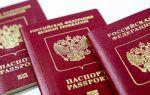Как сделать фото для загранпаспорта: основные требования, подача заявления через Госуслуги