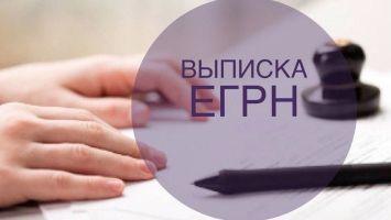 Как получить выписку из ЕГРН: пошаговая инструкция, подача заявления онлайн