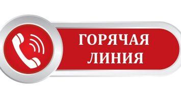 Как обратиться к специалистам горячей линии онлайн-портала Госуслуги: доступные способы, контактная информация