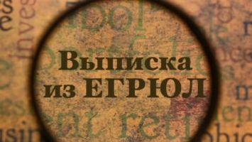 Оформление выписки из ЕГРЮЛ через портал Госуслуги: пошаговое описание процесса, назначение документа