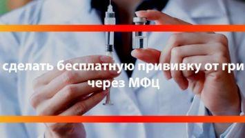 Прививки от гриппа: проведение процедуры в МФЦ в 2020 году, польза вакцинации