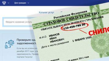 Как войти в свой аккаунт на онлайн-портале Госуслуги с помощью номера СНИЛС?