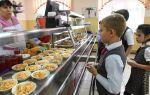 Оплата обедов школьника онлайн: пошаговое описание процесса