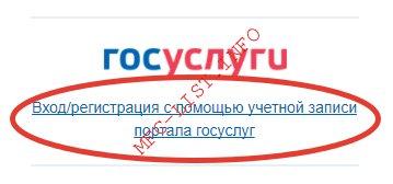 Как оплатить налоги через госуслуги (шаг 1 авторизация на nalog.ru)