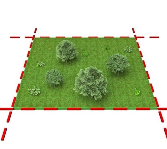 точные границы земельного участка