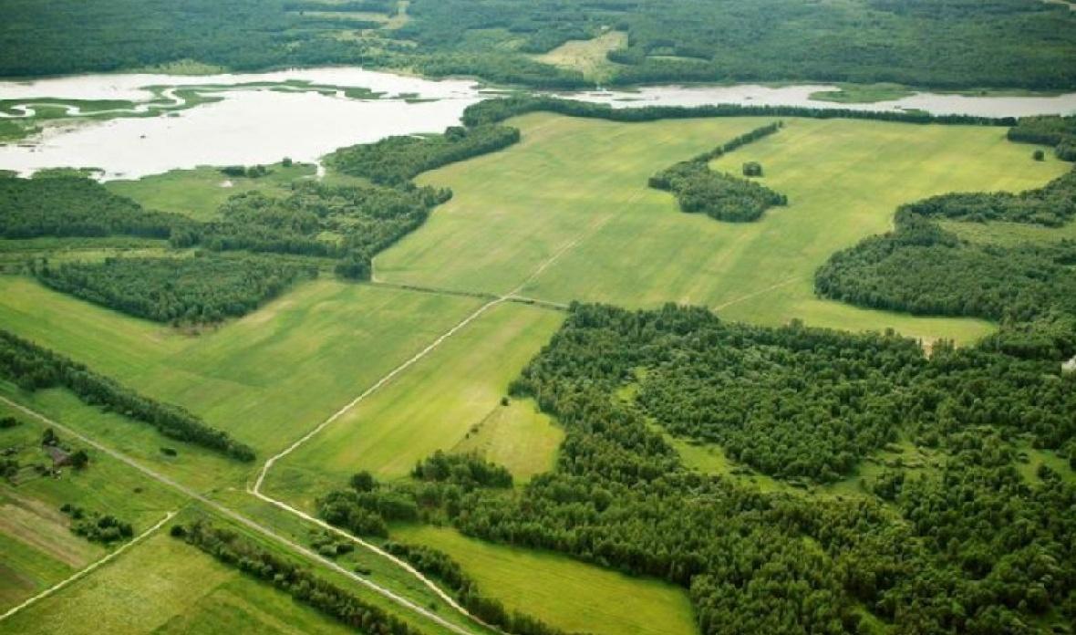 большой земельный участок