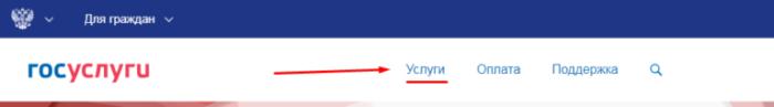 портал электронных государственных услуг