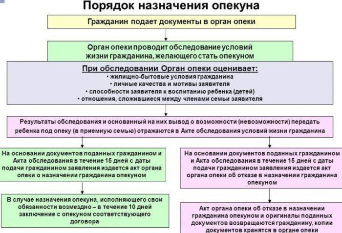 Сроки показания счетчика за электроэнергию