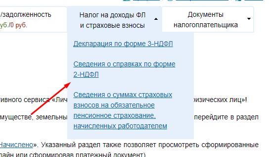 сведения о справках по форме 2-НДФЛ