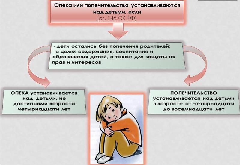 случаи установления опеки над детьми