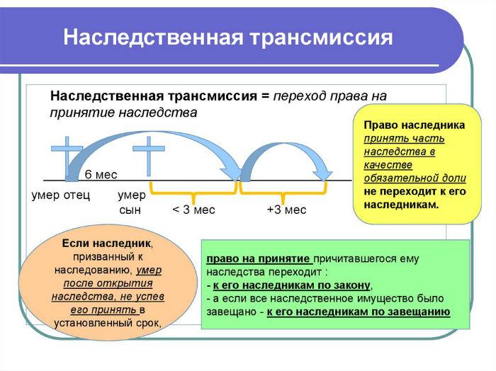 наследственная трансмиссия и переход права на принятие наследства