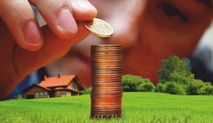 Много монет на земельном участке
