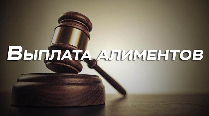 Выплата алиментов суд