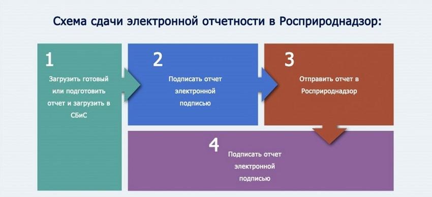 схема сдачи электронной отчетности