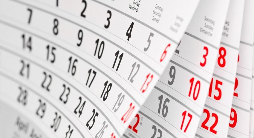 календарь сроки